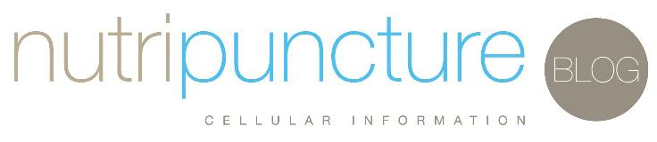 NPBlog-Logo